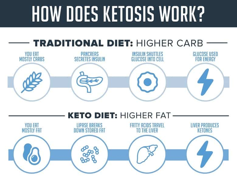 Easy Keto Diet Guide For Beginners is a practical companion covering the benefits & side effects, roadmap and even daily recipes for ketogenic diet.