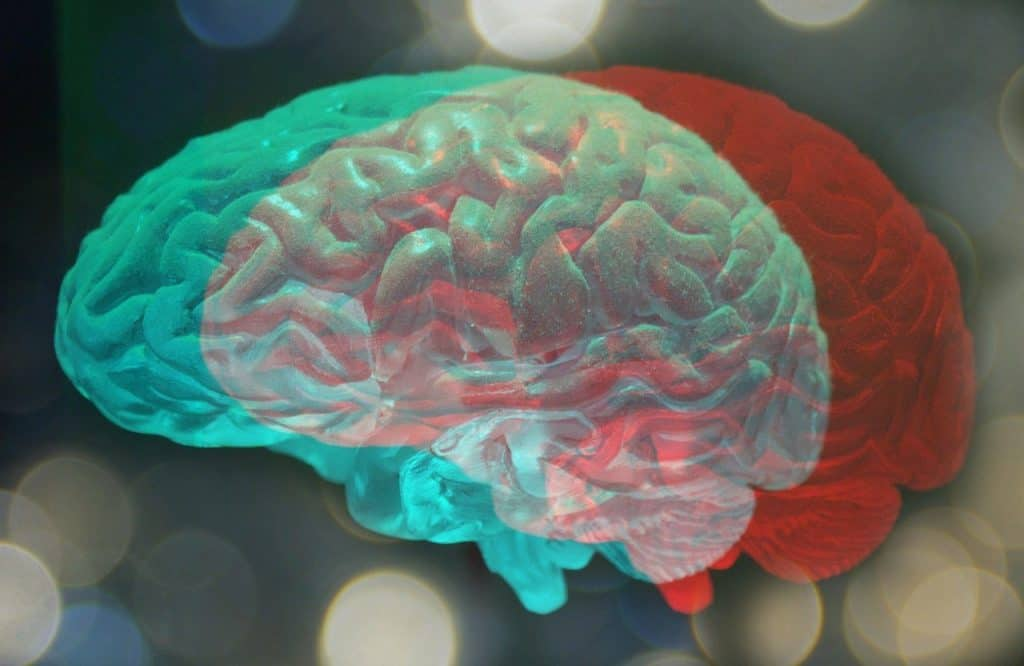 Neuroscientists And Behavioural Experts Explain Why And How To Prevent Brain Fog. 7 easy ways to prevent Brain Fog.